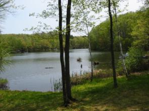 the lake at mom and dad's